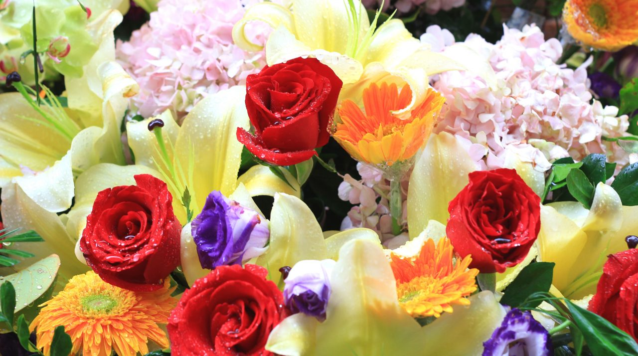 anggrek-zakelijk-bloemenabonnement