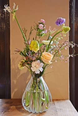 Bloemen vaas verzorgen Anggrek Amsterdam Abonnement